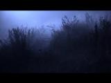 Ах.Туман , туман - гр.НЭНСИ Клипы 2016