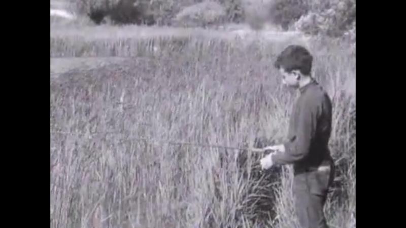 Fernand Martignoni (Jacques Thévoz, 1967)