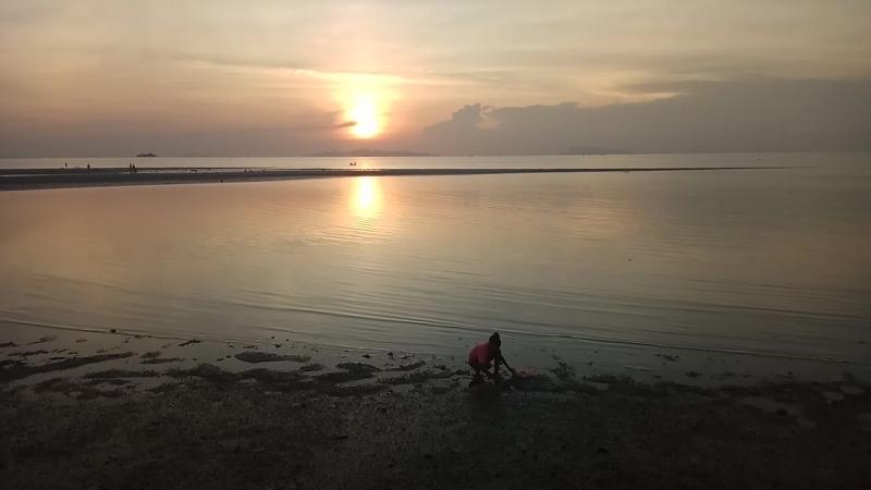 Сбор моллюсков на закате в Натоне