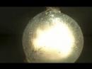 Взрыв петарды под водой