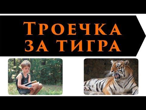Троечка за тигра (Леонид Каминский)