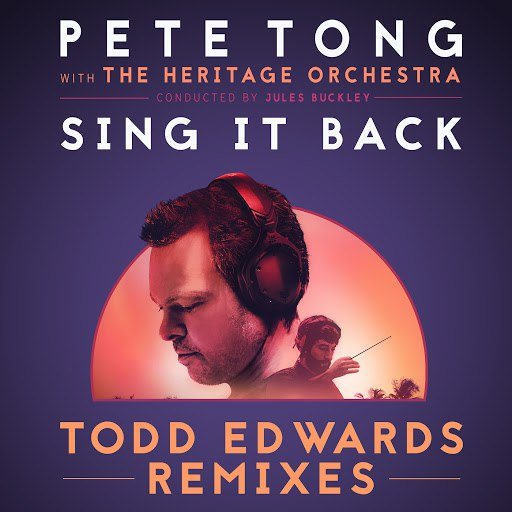 Pete Tong альбом Sing It Back (Todd Edwards Remixes)