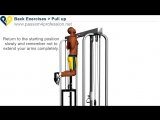 Pull Up Exercise.mp4