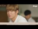 РУС.САБSF9 Dingo mini drama