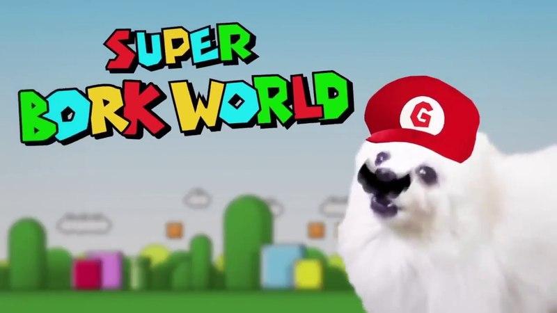 Пёс Марио І Dog Mario