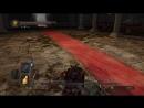 Dark Souls II Собор Лазурного Пути Ornstein Old Dragonslayer после сожжения угля вражды Псевдо ng