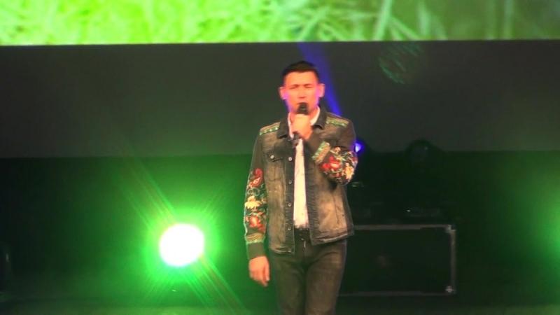 17)Концерт Анвара Нургалиева - Аккошлар 17.10.2017 (Нижнекамск)