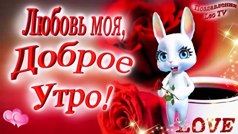 Доброе утро, любовь моя! Красивое пожелание Доброго утра для любимых! Зуби зайка!