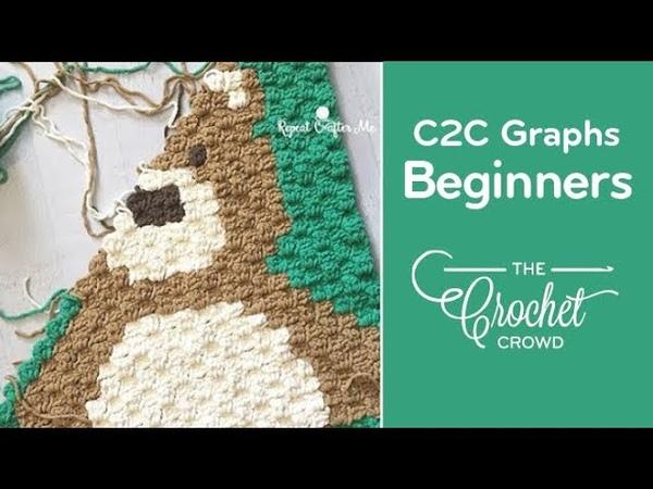 Crochet Corner to Corner (C2C) Graphghans for Beginners