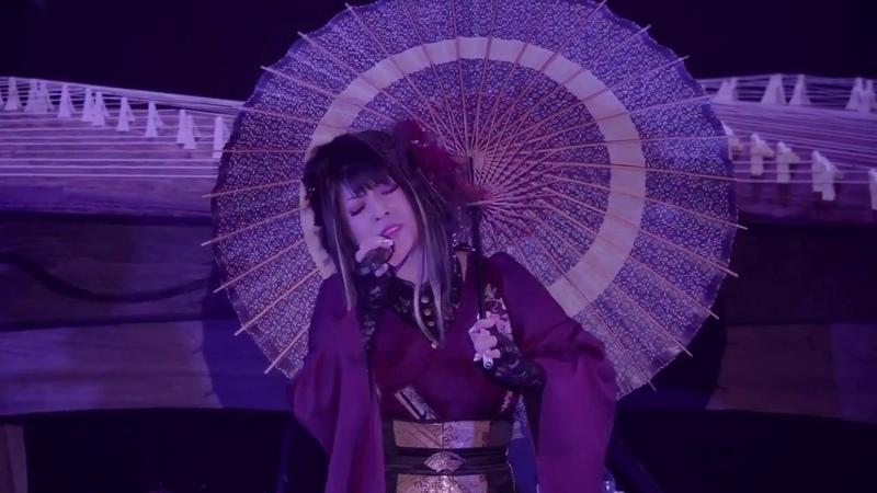 Traditional Japanese Modern Music Nijiiro Chouchou