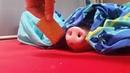 Шел третий день диеты или Sleeping Pig smell of food coub