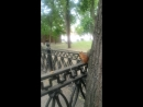 парк 28-панфиловцев