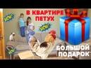 НАСТОЯЩИЙ Петух в Квартире. Огромный сюрприз ПОДАРОК. Giant surprise box | Kid TV