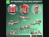 20 мин в день для подтянутого тела
