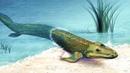 Эволюция позвоночных выход на сушу рассказывает палеонтолог Антон Ульяхин