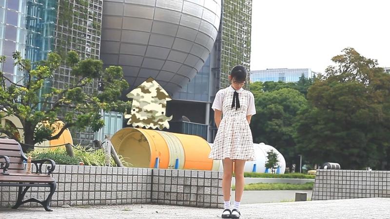 【するめ】ワールドワイドフェスティバル 踊ってみた【初名古屋!】 sm33416990
