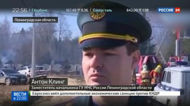 Новости на Россия 24 • Петербуржец сжег деревню, которую посчитал гнездом моджахедов