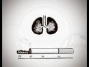 Социальный антитабачный ролик Твое дело табак