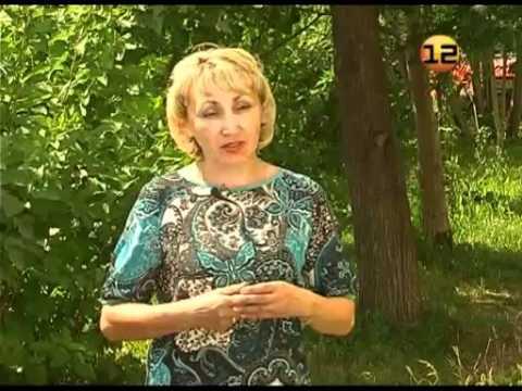 Рубрика «Сем алан» 22 06 2012
