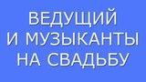 Отзыв  Свадебный ведущий Александр Григорьев дуэт стереопара Воронеж