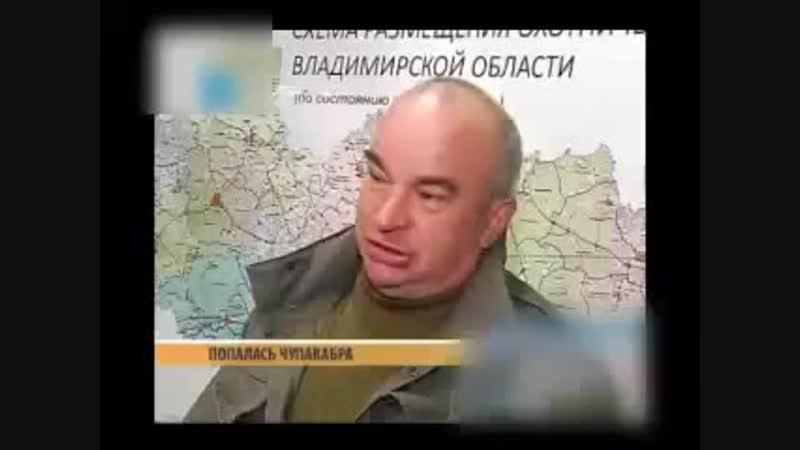 Чупакабра во Владимирской области Чупакабра в Меленках Чупакабра Меленки Чупакабра в Муроме.mp4