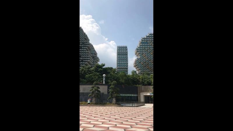 Обзорная экскурсия по городу Санья 😍 🇨🇳 Китай, 🏝Хайнань