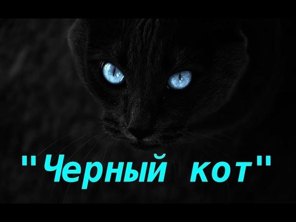Эдгар По Черный кот