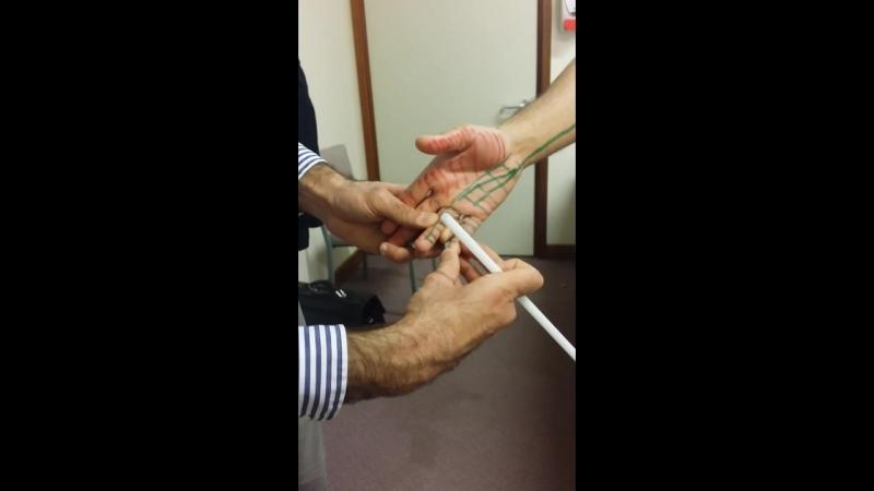 5. UL Ulnar nerve - Course