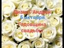 MiniMovie_Brightness_180926