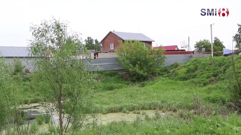 Зловонная речка Власиха в селе Толмачёво. Июнь 2018