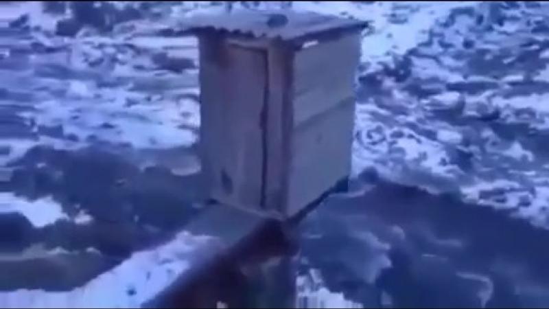 Туалет для лечения от запоров