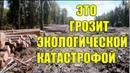 Вырубка леса. ФИЛЬМ РУССКАЯ ТАЙГА. Павел Пашков