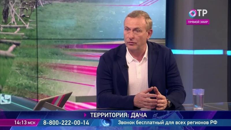 OTVrussia Юрий Шалыганов В СНТ до 50 земельных участков не обрабатываются. Их нужно вводить в оборот