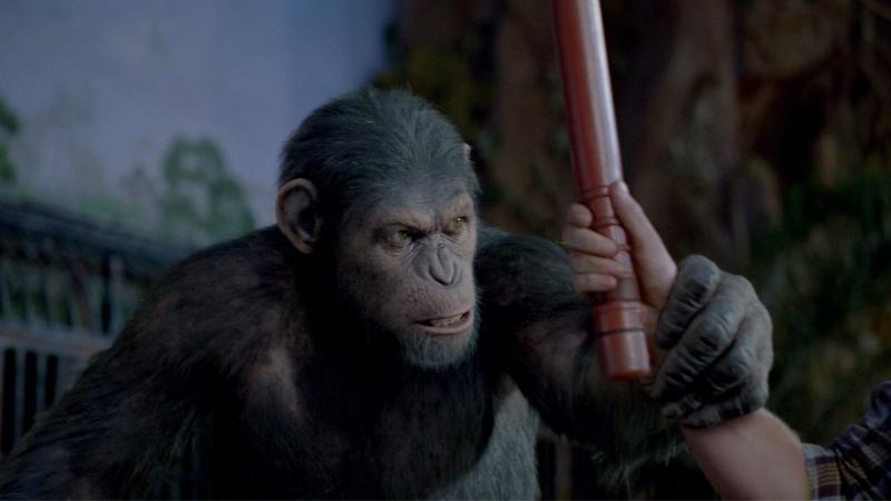 Восстание планеты обезьян (2011) 12
