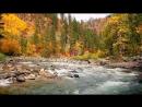 Осенний блюз. – Золотой саксофон Autumn Blues. – Golden Saxophone • ВидеоКанал «exZotikA Max»
