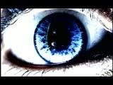 BABYLON ZOO - SPACEMAN ( HD )