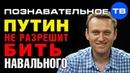 Почему Путин не разрешит Золотову бить Навального Познавательное ТВ Артём Войтенков