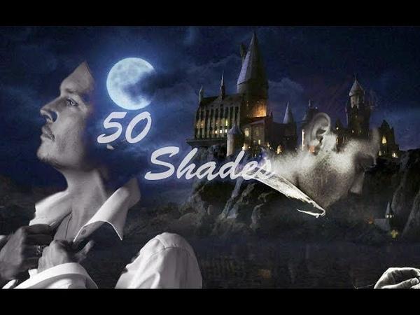 Albus Dumbledore x Gellert Grindelwald |50 shades