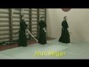 Niden Ryu Iaijutsu Kenjutsu Omote mokuroku