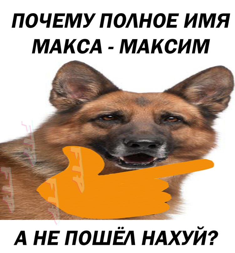 Максим Даниловский | Москва