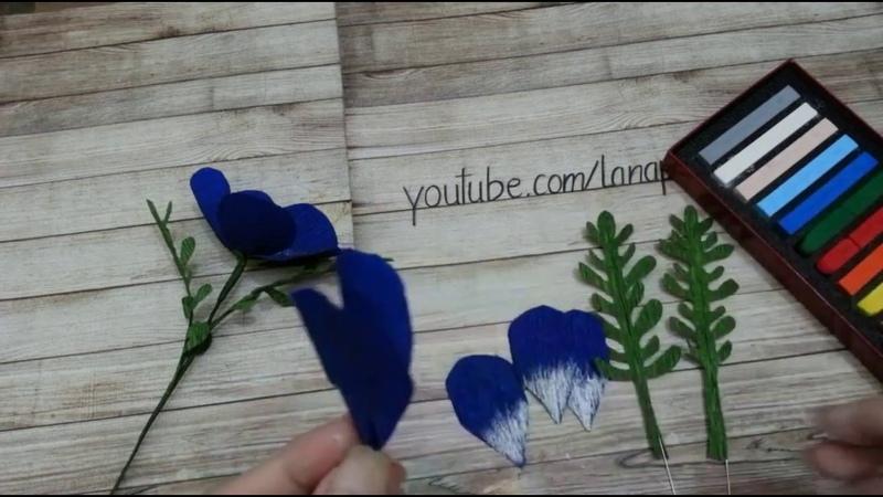 Hướng Dẫn Làm Hoa Mắt Xanh Bằng Giấy Nhún - Making Baby Blue Eyes Flower