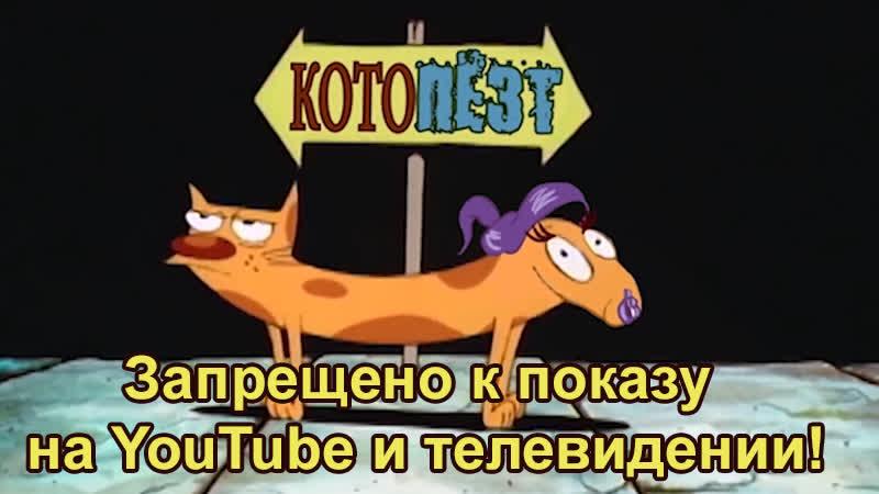 Котопёс запрещенное видео Котопёзд караоке