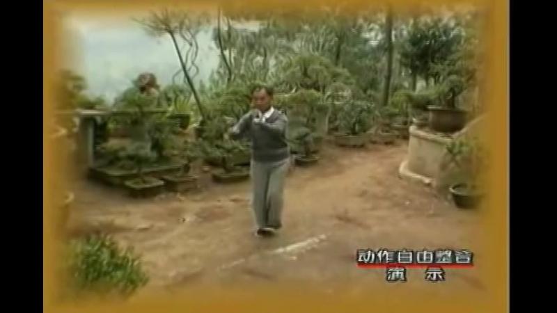 Ицюань. Восстановление костного мозга в даосской традиции.