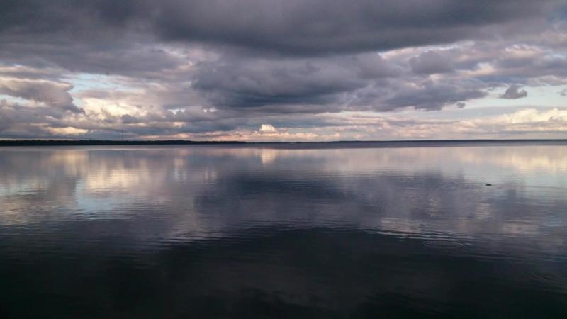 Озеро Нарочь, побережье у санатория Нарочанка, 24 июня 2018 года