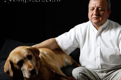 СОБАКИ....( ВСЕ ПСЫ ПОПАДАЮТ В РАЙ) Дорадо 11 сентября 2001 года слепой специалист по компьютерной технике по имени Омар Эдуардо Ривьера работал со своей собакой Дорадо на 71 этаже Всемирного