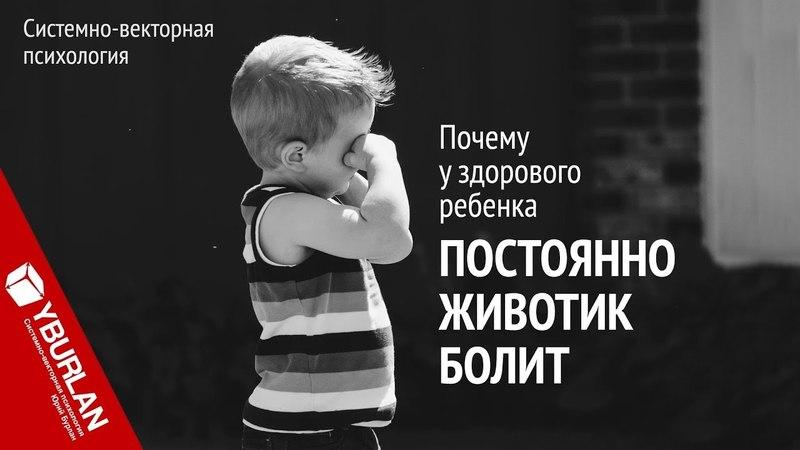 Почему у здорового ребенка постоянно животик болит Системно векторная психология