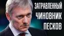 Песков пожаловался на лютую травлю со стороны российского общества