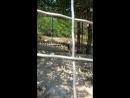 Сафари парк. Геленджик часть 2