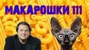 Макарошки от Первого канала ( в защиту макарошек ) / Кот Костян