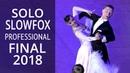 Solo SlowFox   2018 Russion Championship   Professional Standart - Final